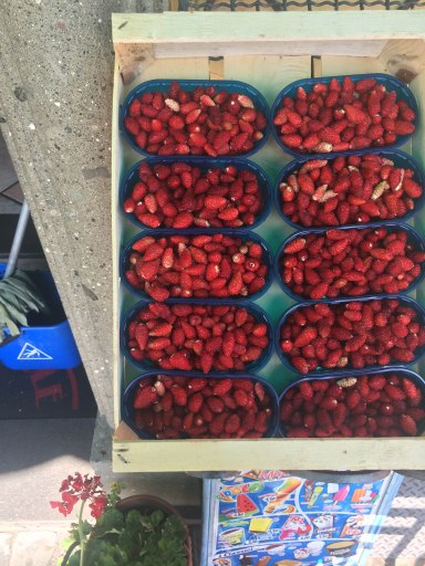 Strawberries from Nemi - a small Castelli Romani town known for their tiny strawberries